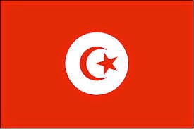 صور تردد قناة التونسية على النايل سات 2019