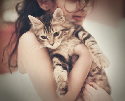 بالصور اجمل صور فتيات وقطط 010af20f34a639505be098454ec90018