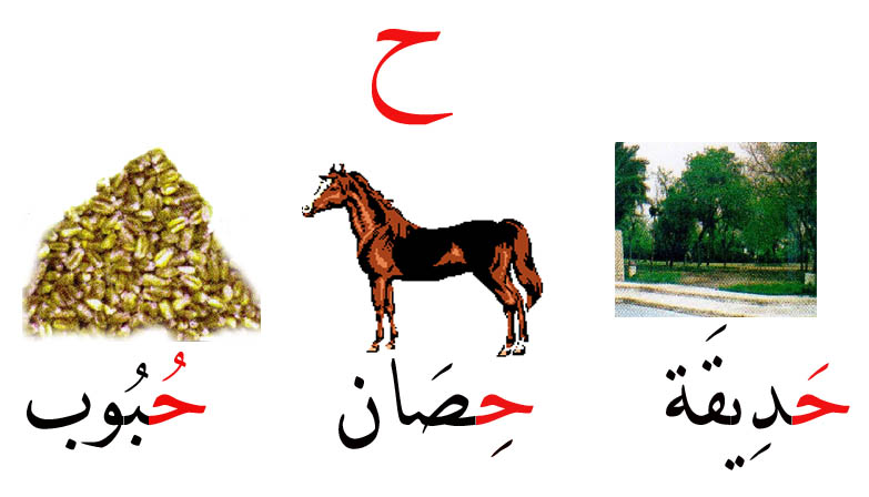 صوره كلمات تبدا بحرف الحاء