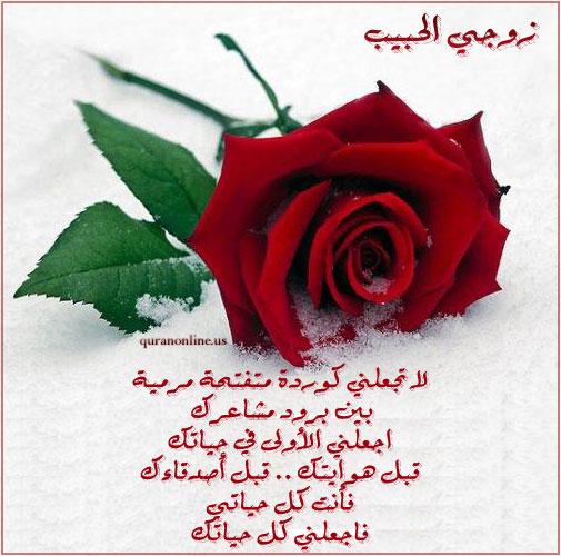 بالصور رسائل حب للزوجة جريئة 04eca3001ee86bad8126bffd7f72f54a