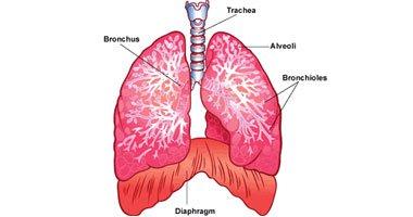 صور اسباب الماء على الرئة