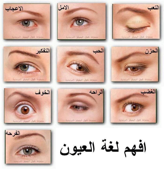 بالصور كيف افهم لغة العيون بالصور 067191785731fb3e6711830a38f41cfe