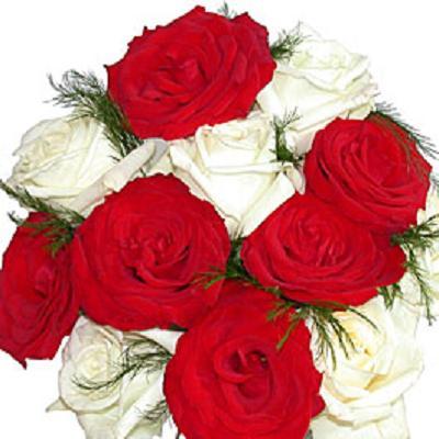 بالصور احلى واجمل باقه زهور 11adbabbb555f6d134123adaecea23e6