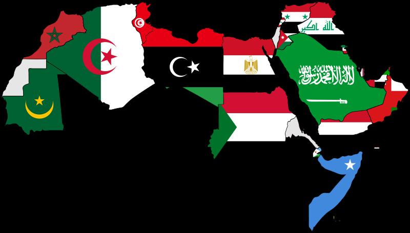 بالصور الحلم العربي جديد صور 1ab734543ee38a0a02c7d9518fc169f1