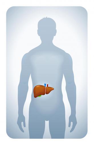 صوره علاج امراض الكبد بالاعشاب