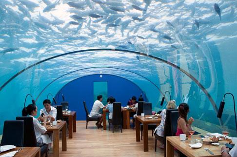 بالصور اشهر صور المطاعم في العالم 1c875a9030a78d4490edf34b7eb2ddab