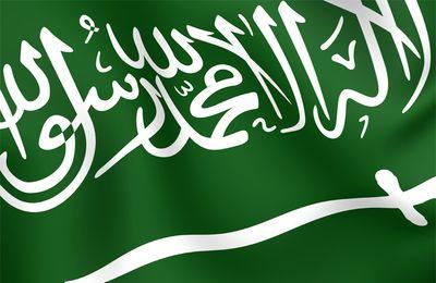 بالصور صور علم السعودية الجديد 209f41c3343ba99c3906792a76a84c48