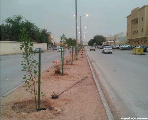 صوره النسيم الشرقي شقق للايجار في حي النسيم الشرقي في الرياض