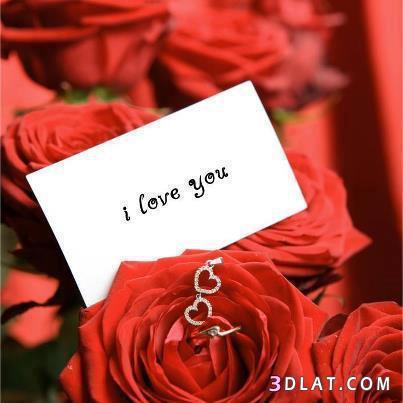 بالصور رسائل عن الحب الجميل 24a559f770ad936be5a63260fe4735e0