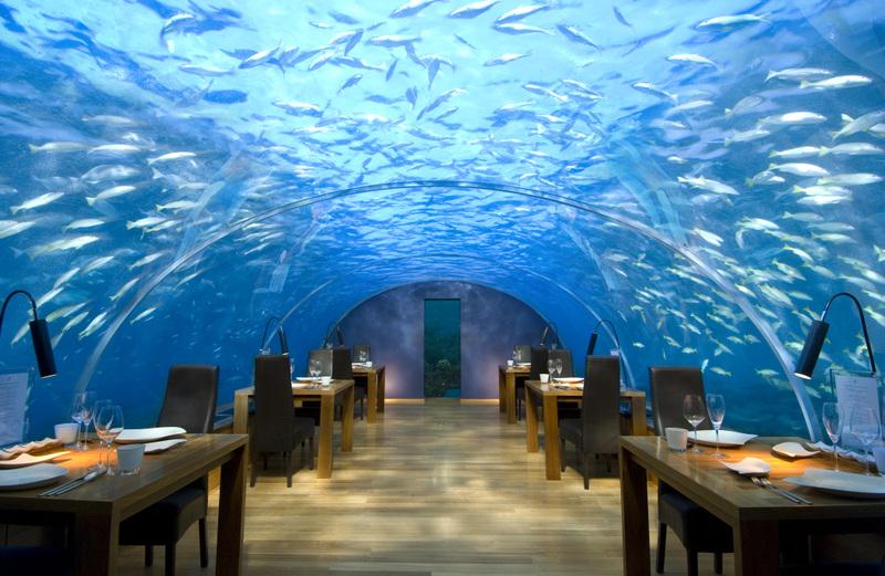بالصور اشهر صور المطاعم في العالم 3598cd2a237517383406125c4deed0dc