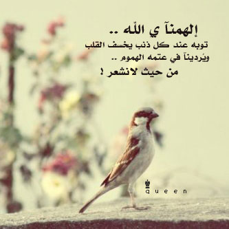صوره قصائد شعرية دينية جميلة