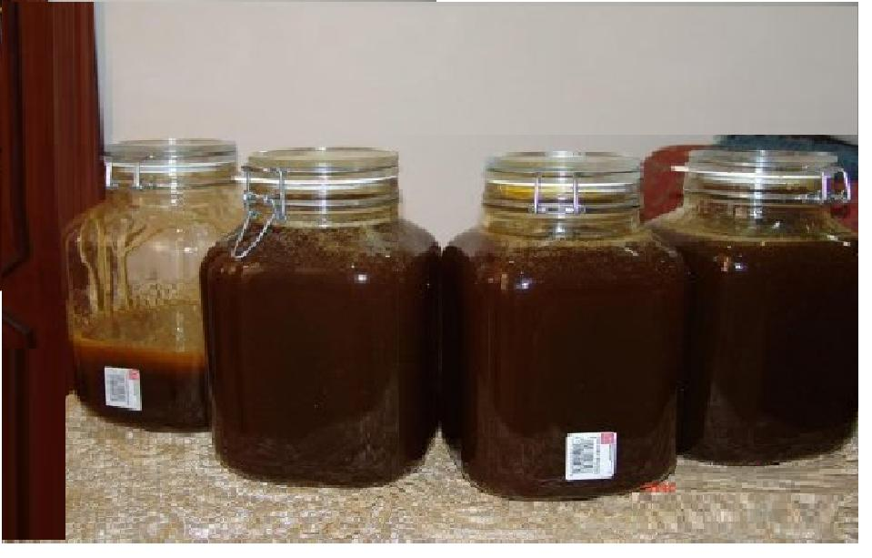 صوره العسل الجبلى وفوائده