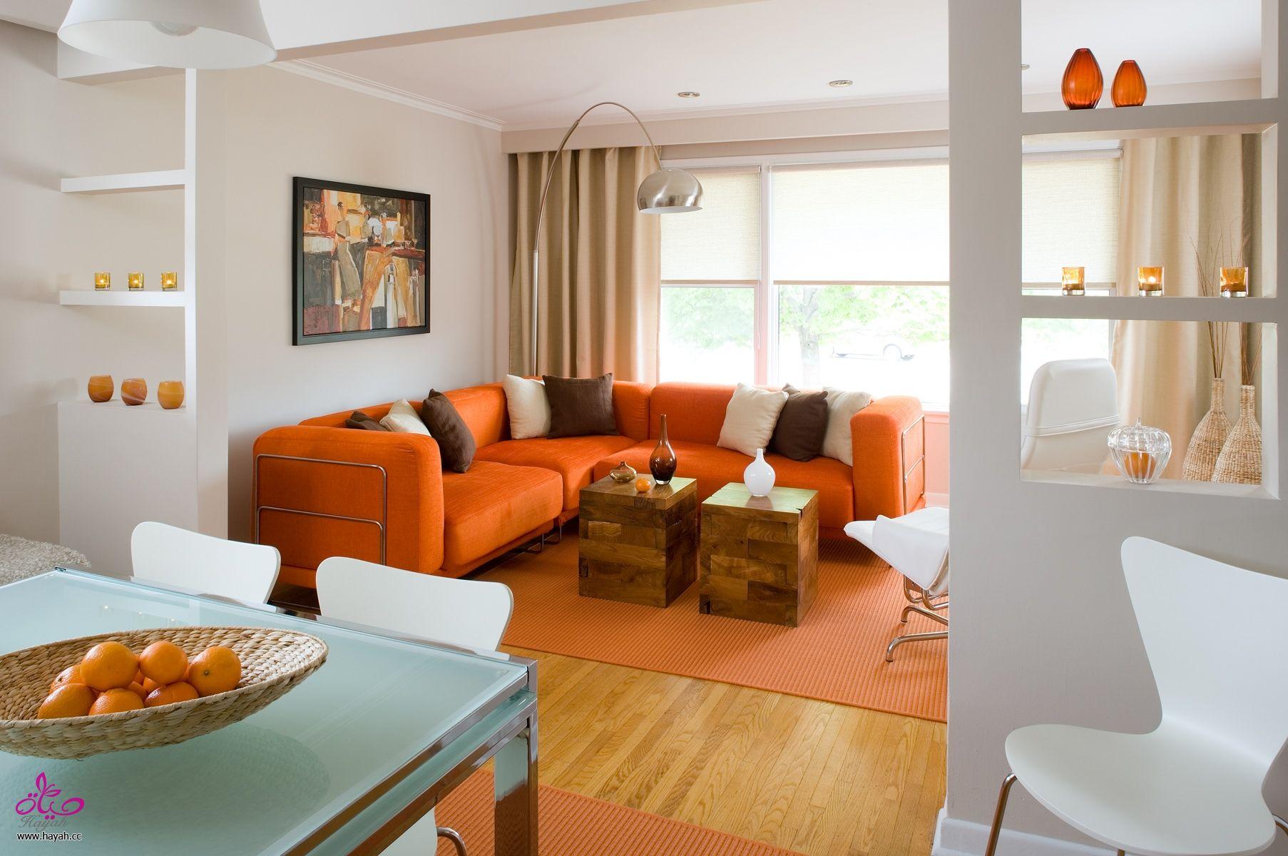 بالصور ديكورات منزلية جديدة فخمة بتصميمات عالمية غاية في الجمال 3ffcf817055741ca37b11404e1b1de6e