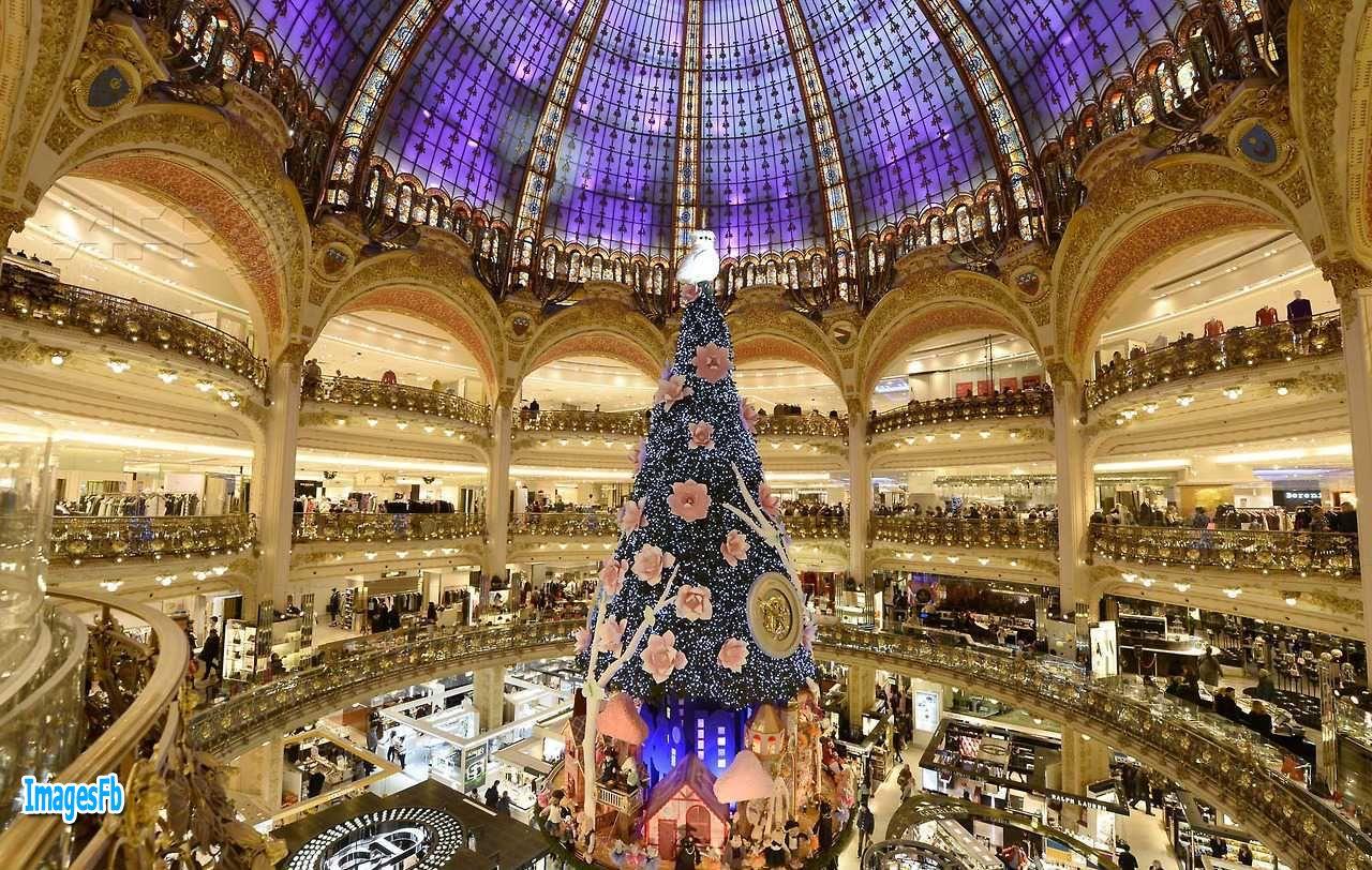 صور صور شجرة الميلاد لعام 2019