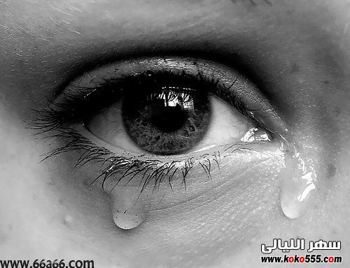 بالصور صور موت حزينة جديدة 5519b2e85954446d314a58e5cda20947