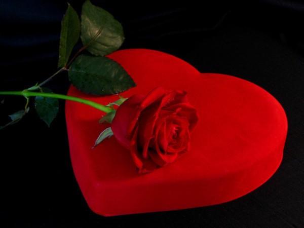 بالصور صور قلب احمر جميل 5658cda48acb7bef2d425faf3e30f131
