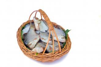 صوره تفسير الاحلام صيد السمك