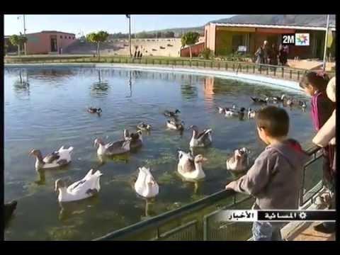 صوره منتجع الطيور بمدينة فاس