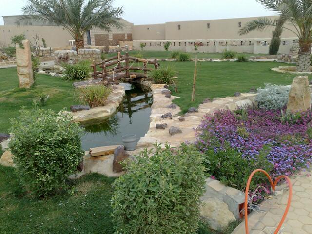 صور صور وديكورات حدائق منزلية
