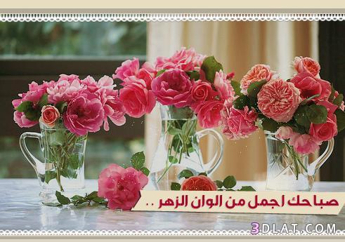 بالصور رسائل صباح الخير للحبيبة 6e64033452c5af5cb5dc5c42eee2043b