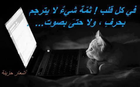 صوره بوستات حزينة عن الحب