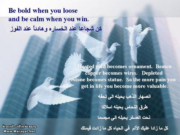 صورة كلام رائع مع افضل صور 94c5283e3b56d248955d15af722dd066