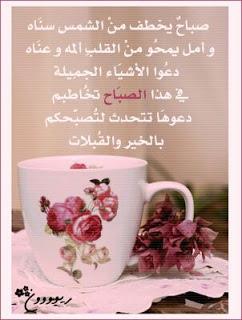 بالصور احلي صور ورود الصباح 9b94fb29bd476ed46d51b0ae6cbefda6