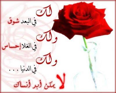 بالصور رسائل شعر عن الحب والغرام a0f592092f9afbe58769136389d7dfba