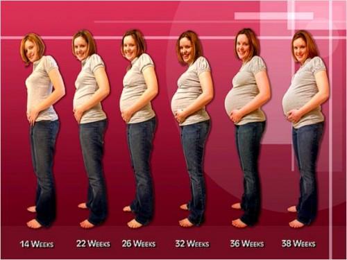 صوره طرق حمل سريع لمن ترغب في الحمل بسرعة اليك 11 نصيحة لحمل اسرع