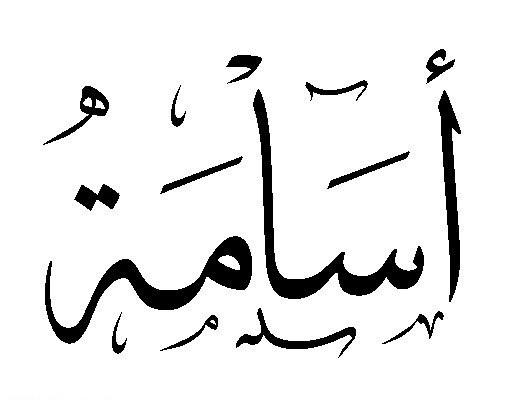 بالصور ما معنى اسم اسامة في اللغة العربية a6a0db5bb6d1b1b459e9b418296e5488