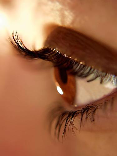 بالصور العيون العسلية اجمل العيون b00733c793e48ef00847824ed69396ac