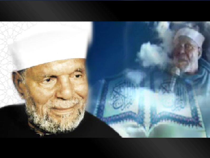 صوره الشيخ محمد متولى الشعراوي ويكيبيديا