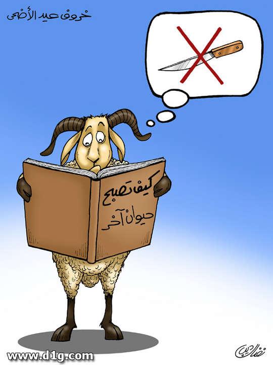 بالصور كاريكاتير عن عيد الاضحى d097792431a59e71ef3fc6578f1ddcb7