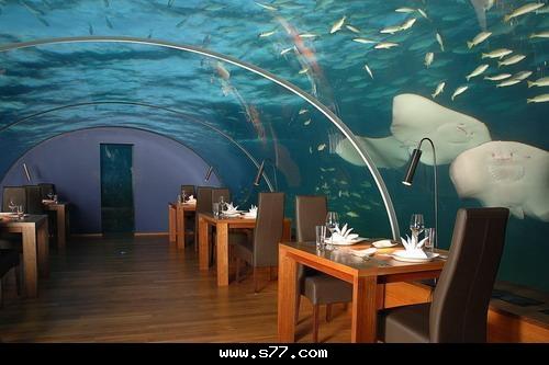 بالصور اشهر صور المطاعم في العالم e984a863b3ae119643e1c12b69c22371