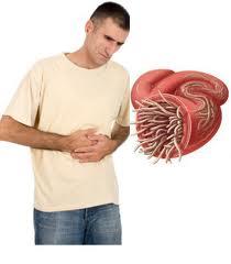 بالصور افضل علاج لديدان البطن للكبار f2bf54cbc97ed0d7546d2474ebb26eb0