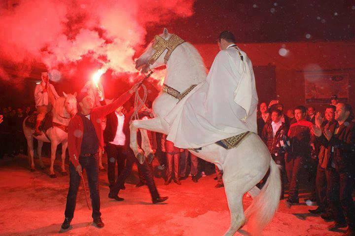 صوره اعراس الجزائر تلمسان بالصور