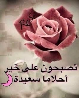 بالصور رسائل الحب قبل النوم fad340bce49a7f1596f8fb9875874041
