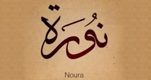 صورة زخرفة الاسم بالعربيه اجمل الاسماء المزخرفة روعه 7029hlmjo 310x165