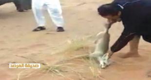 صور صاحب فيديو تعذيب ثعلب