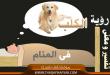 بالصور تفسير رؤية الكلب بالحلم dog 110x75