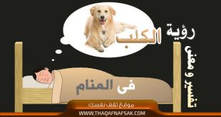 صوره تفسير رؤية الكلب بالحلم