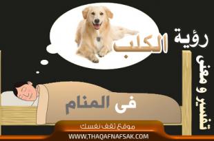 صورة تفسير رؤية الكلب بالحلم , حلمت بكلب ما معني هذا؟