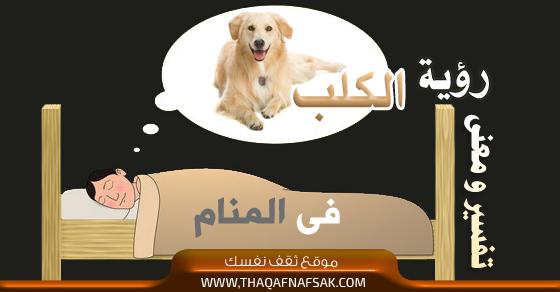 صور تفسير رؤية الكلب بالحلم