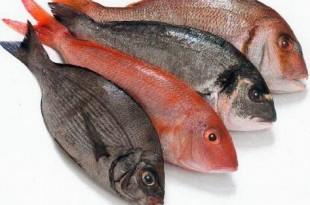 صوره تفسير حلم صيد السمك