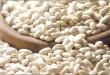 بالصور ما هى فوائد الفاصوليا الفاصوليا البيضاء1.jpeg 110x75