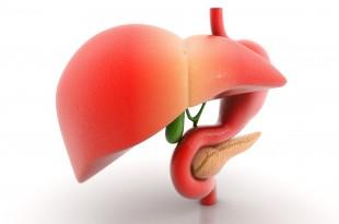 صوره علاج الحصى في الكبد