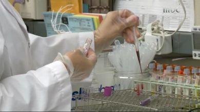 بالصور اخر ماتوصل اليه الطب بكتيريا تقاوم السرطان