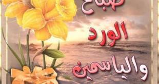 صور بطاقات صباح الورد والياسمين