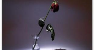 صور اجمل كلام الحب الحزين