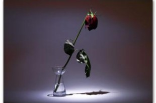 صوره اجمل كلام الحب الحزين